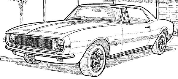 Muscle Car Collector Camaro Cars Coloring Pages