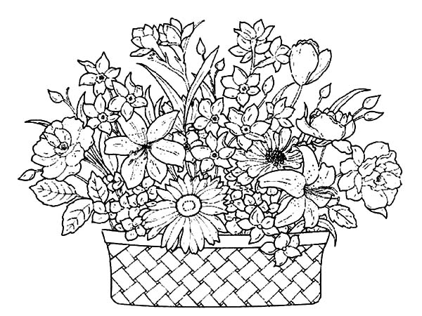 How To Draw A Beautiful Flower Basket : A basket of flowers full beautiful coloring