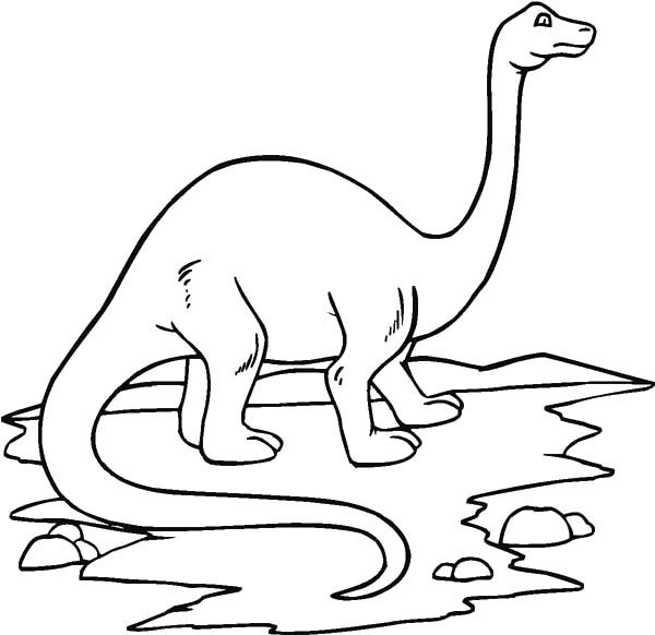 Apatosaurus, : Amazing Animal Apatosaurus Coloring Pages