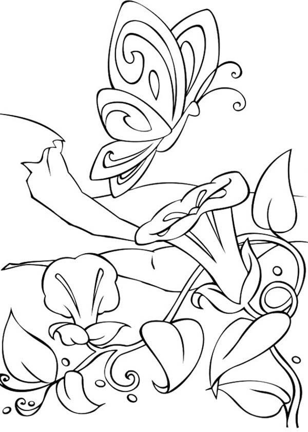 Amazing World of Barbie Fairytopia Coloring Pages | Best Place to Color