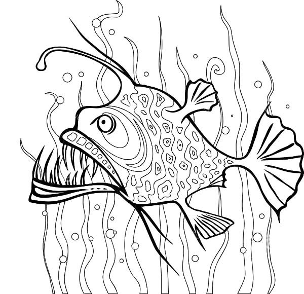 angler fish between seaweed coloring pages