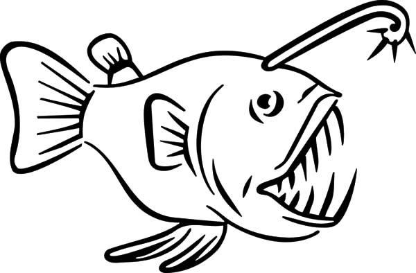 Angler Fish, : Angler Fish Carnivore Fish Coloring Pages
