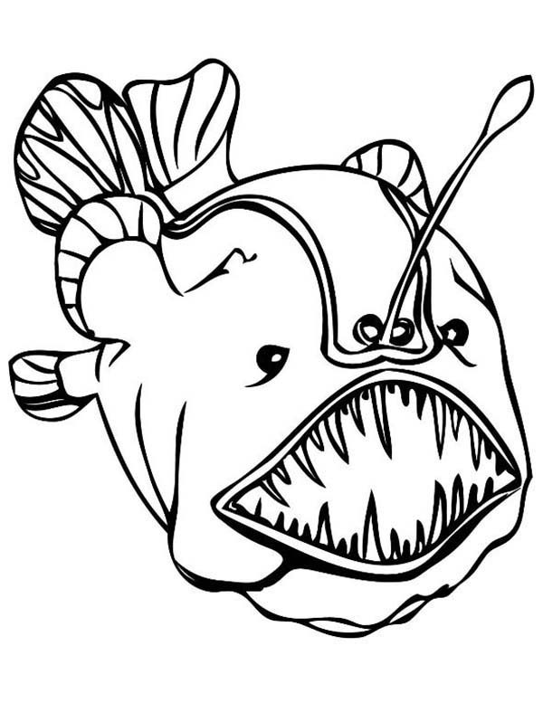 Angler Fish, : Angler Fish Enormous Teeth Coloring Pages 2