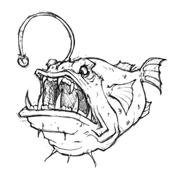angler fish coloring page - deep sea anglerfish drawing