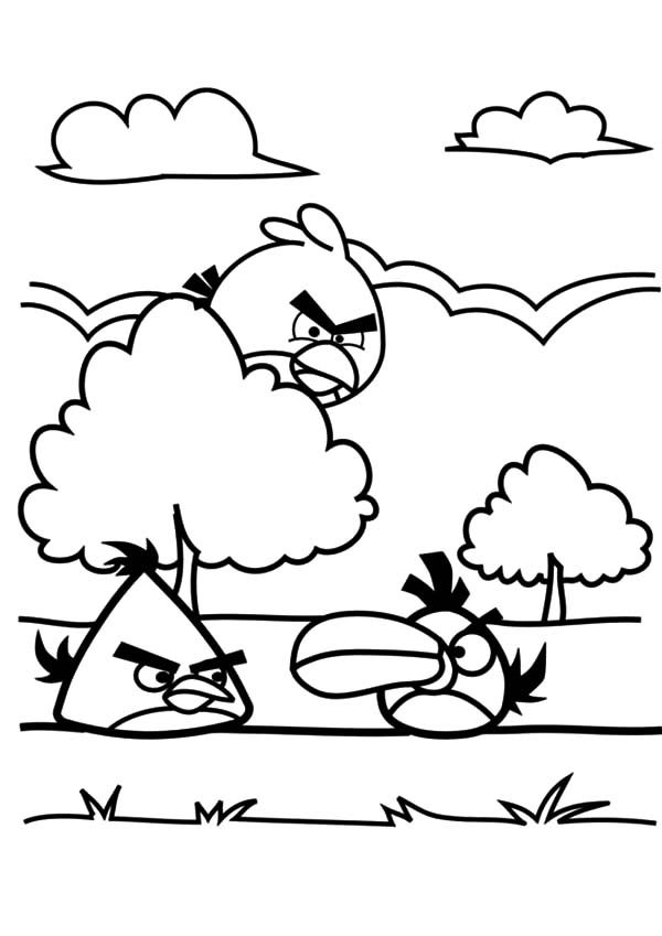 Angry Bird, : Angry Bird Playing Near a Tree Coloring Pages