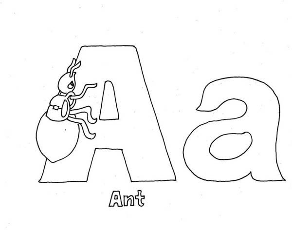 Letter A, : Ant for Capital and Small A on Learning Letter A Coloring Page
