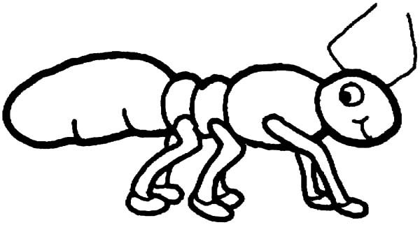 Ants, : Ants Has Six Feet Coloring Pages