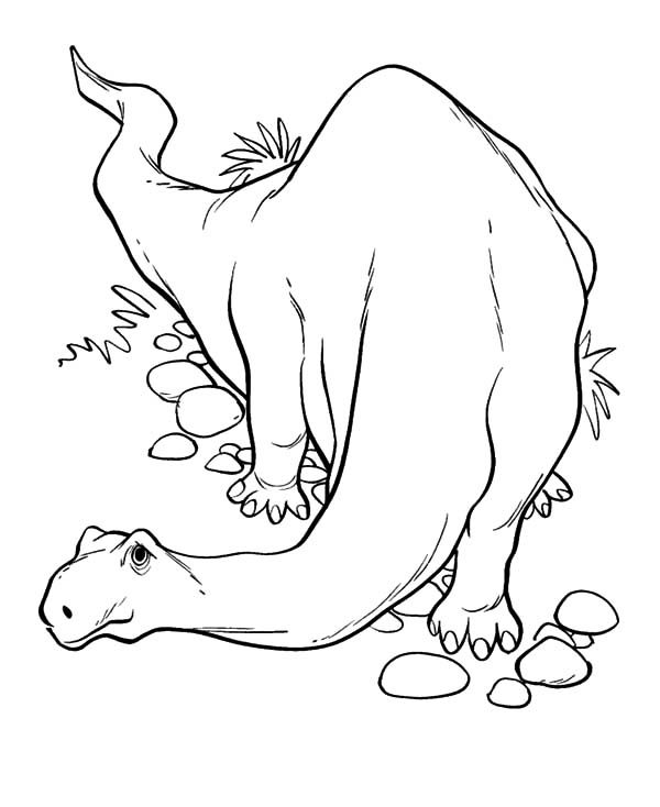 Apatosaurus, : Apatosaurus Sneaking Around Coloring Pages