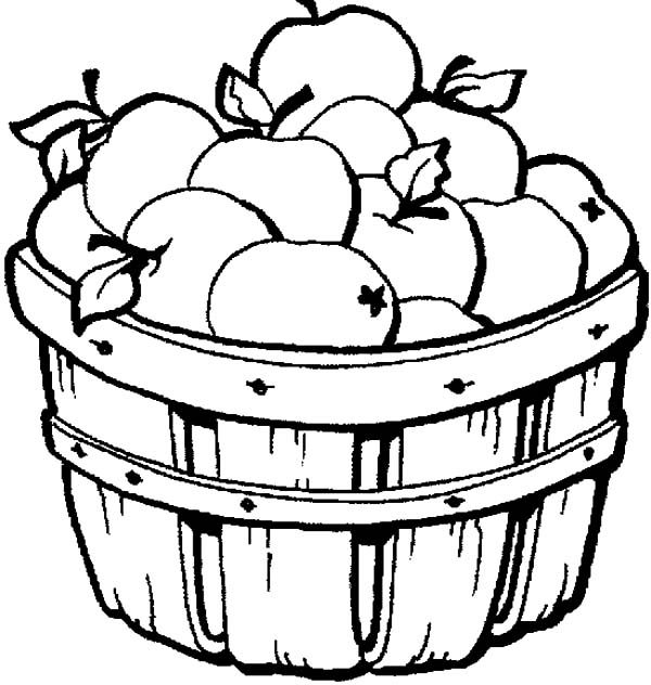 Apple Basket, : Apple Basket Coloring Pages