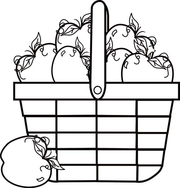 Apple Basket, : Apple Basket Full of Apple Coloring Pages