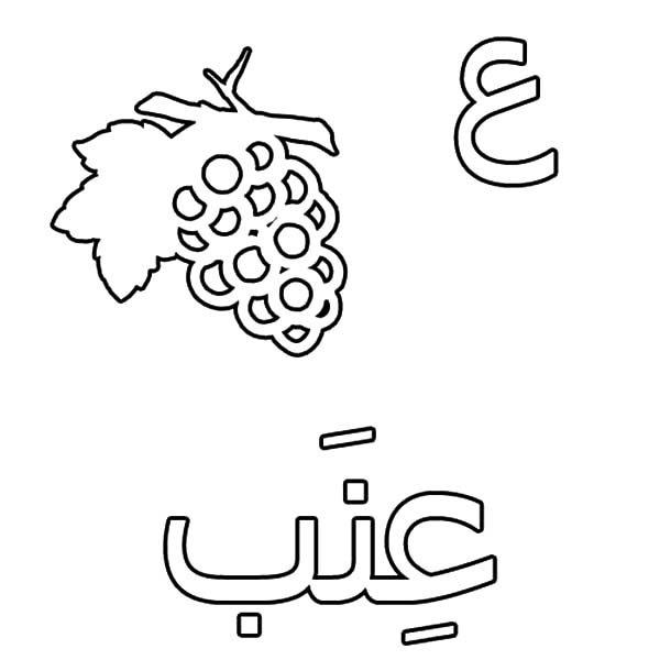 Arabic Alphabet, : Arabic Alphabet Ain for Grape Coloring Pages