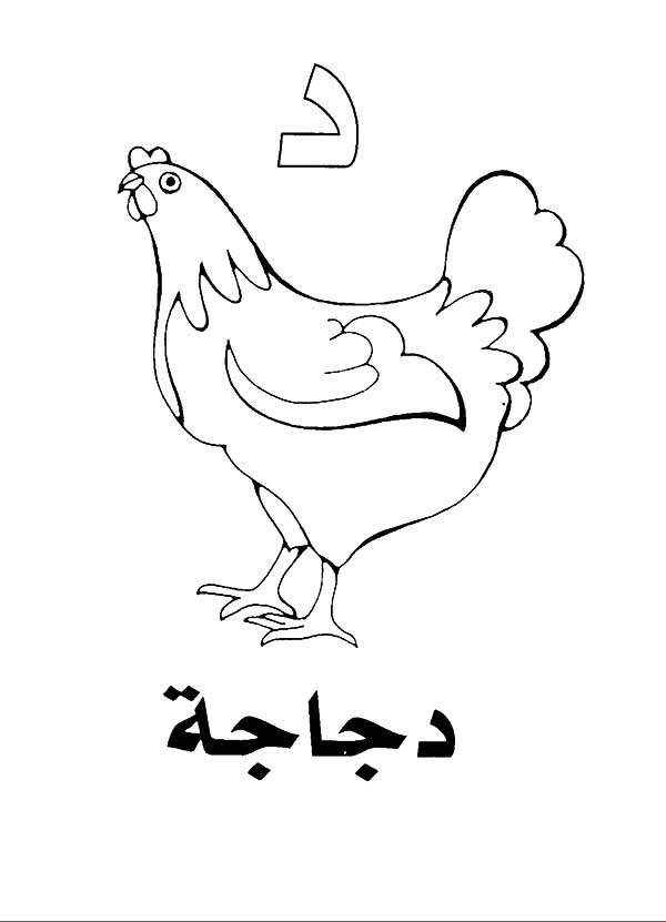 Coloring Pages Arabic Alphabet : Arabic alphabet daal for hen coloring pages