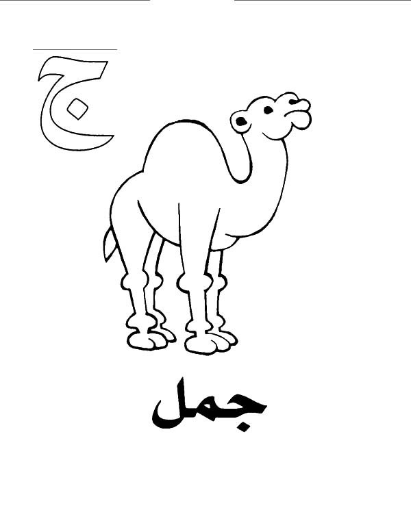 Arabic Alphabet, : Arabic Alphabet Jeem for Camel Coloring Pages