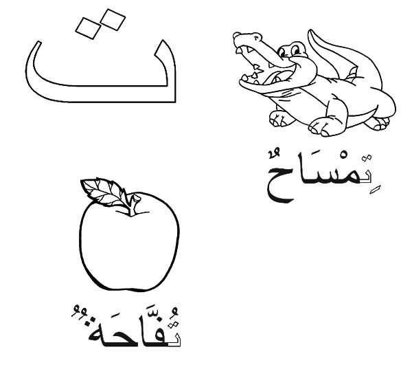 Arabic Alphabet, : Arabic Alphabet Taa for Crocodile and Apple Coloring Pages