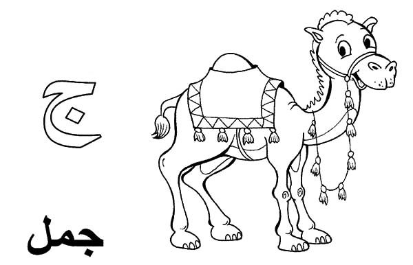 Arabic Alphabet, : Arabic Alphabet for Camel Coloring Pages