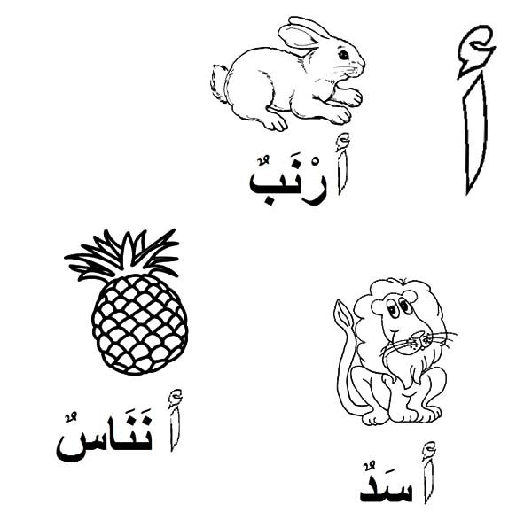 Arabic Alphabet, : Arabic Alphabet for Lion Rabbit and Pineapple Coloring Pages