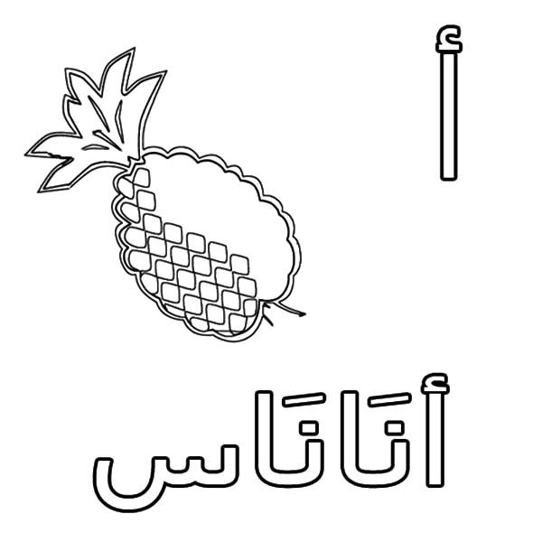 Arabic Alphabet, : Arabic Alphabet for Pineapple Coloring Pages