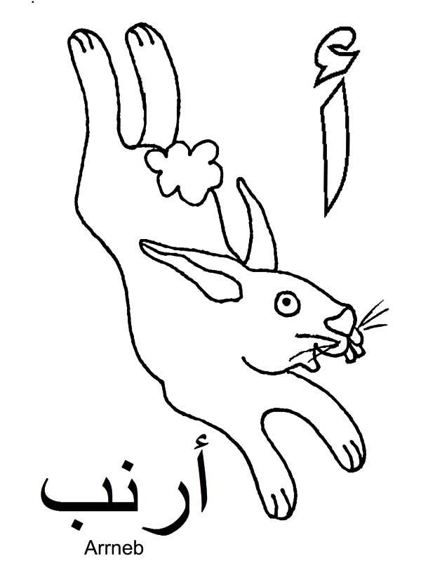 Arabic Alphabet, : Arabic Alphabet for Rabbit Coloring Pages