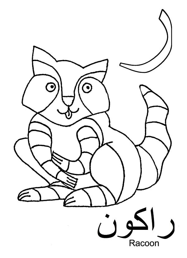 Arabic Alphabet, : Arabic Alphabet fro Racoon Coloring Pages