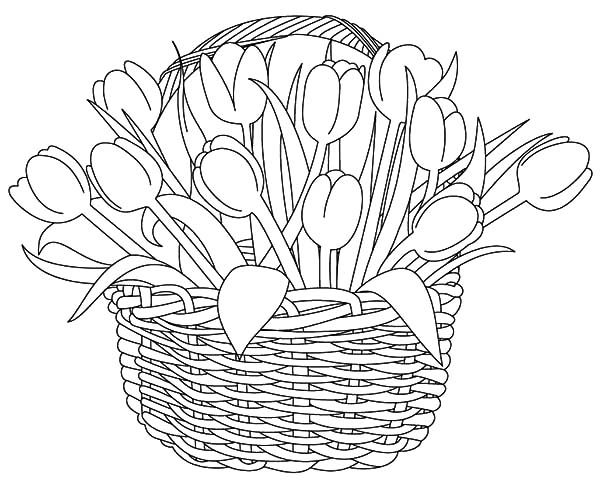 Basket of Flowers, : Beautiful Tulips Basket of Flowers Coloring Pages