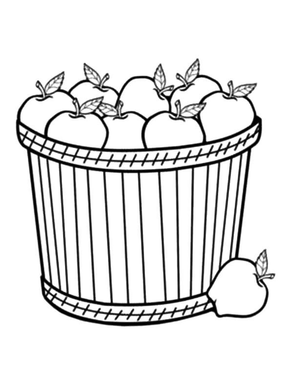 Apple Basket, : Bring a Lot of Apple with Apple Basket Coloring Pages