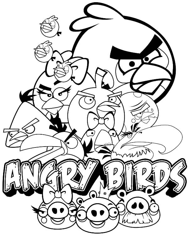 Angry Bird, : Cartoon of Angry Bird Coloring Pages