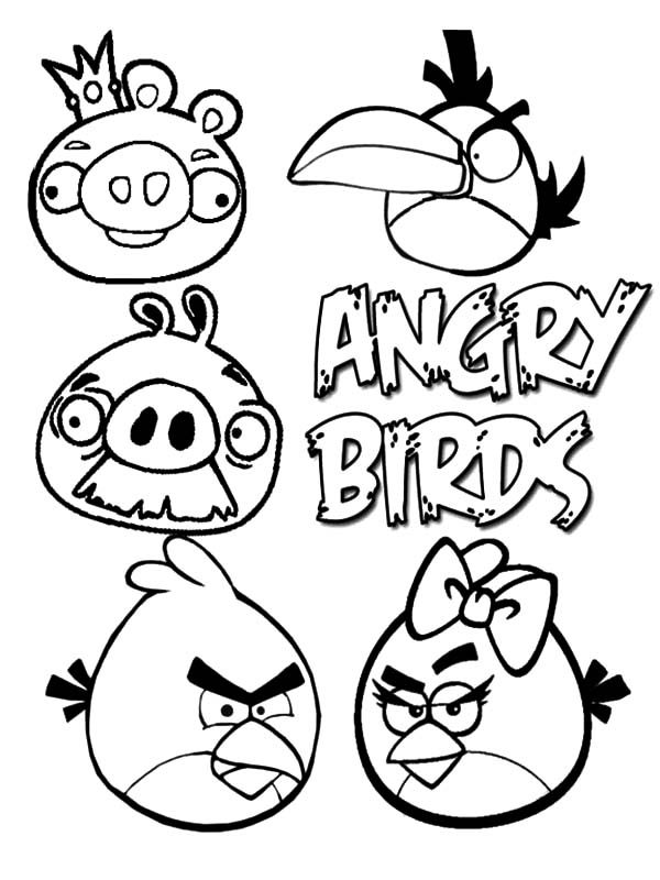 Angry Bird, : Characters of Angry Bird Coloring Pages
