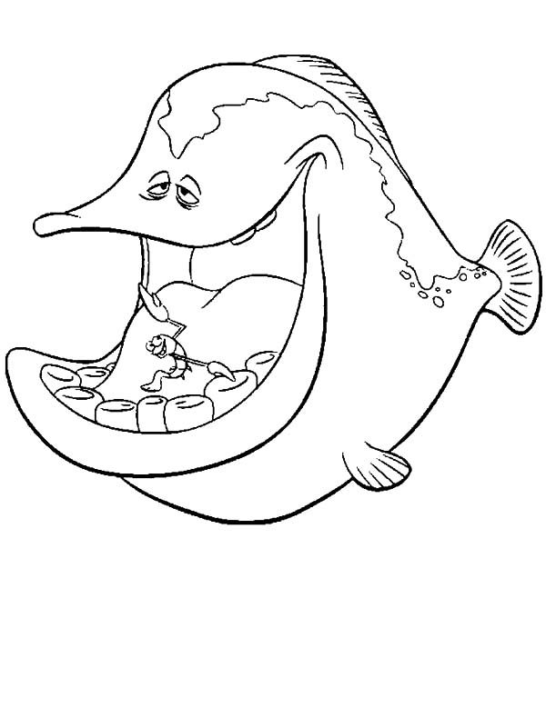 Disney Cartoons Barracuda Fish Coloring Pages
