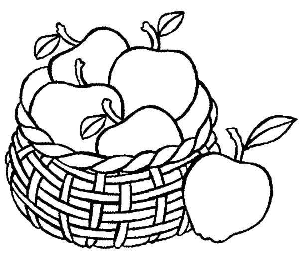 Apple Basket, : Drawing Apple Basket Coloring Pages