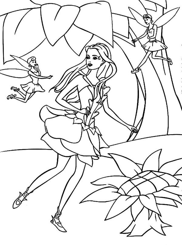Barbie Fairytopia, : Elina Entertained by Other Fairy in Barbie Fairytopia World Coloring Pages