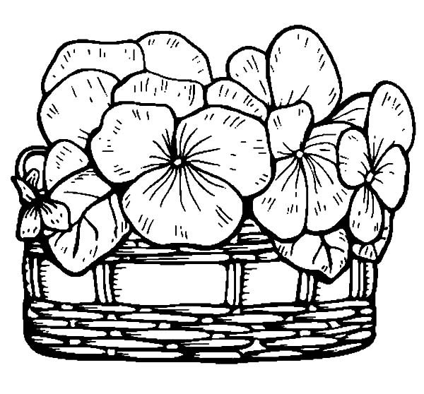 Basket of Flowers, : Filling Basket of Flowers with Fresh Flowers Coloring Pages