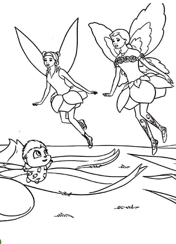 Friends of Barbie Elina in Barbie Fairytopia World Coloring Pages ...