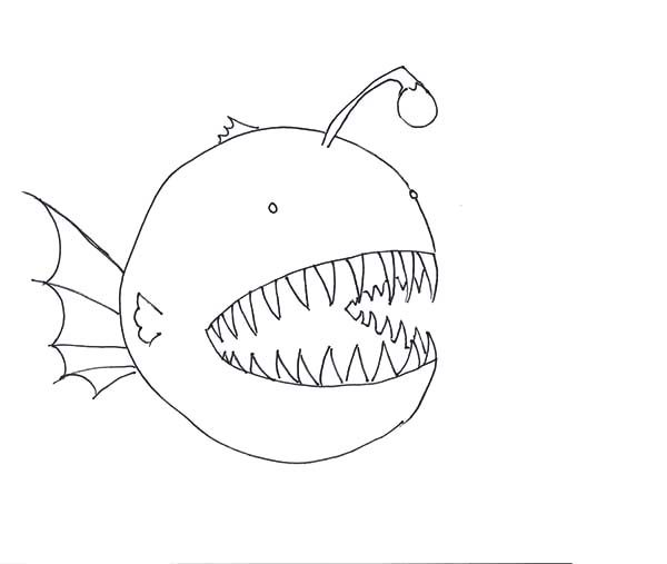 Angler Fish, : How to Draw Angler Fish Coloring Pages