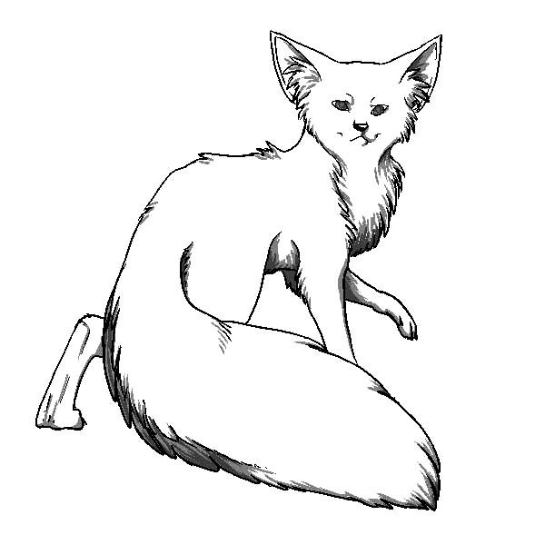 Artic Fox, : Long Tailed Artic Fox Coloring Pages