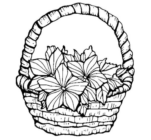 Basket of Flowers, : Lovely Flowers in Basket of Flowers Coloring Pages