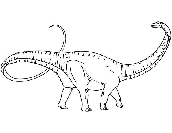 Apatosaurus, : Pre Historic Animal Apatosaurus Coloring Pages