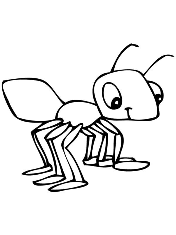 Smiling Baby Ants Coloring Pages