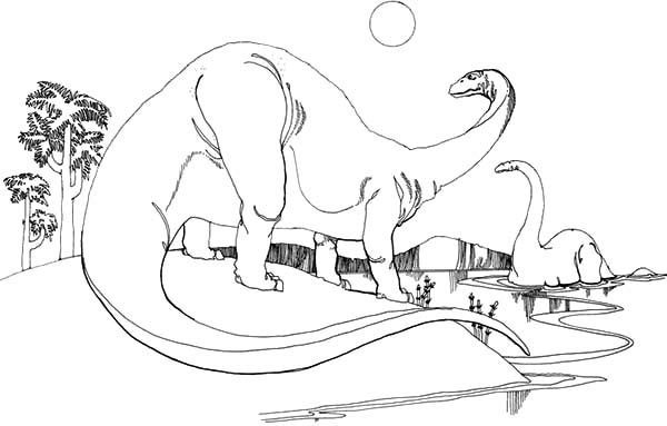 Apatosaurus, : Thirsty Apatosaurus Drinking at Lake Side Coloring Pages