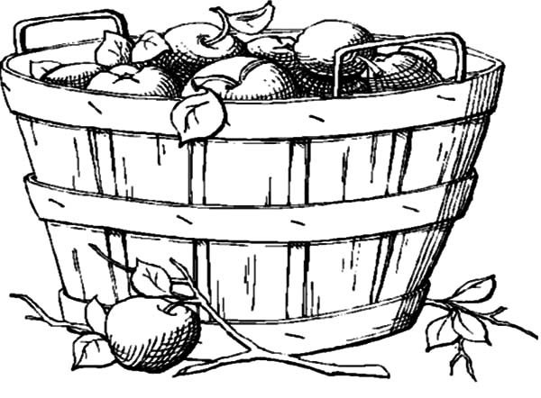 Apple Basket, : Wooden Apple Basket Coloring Pages