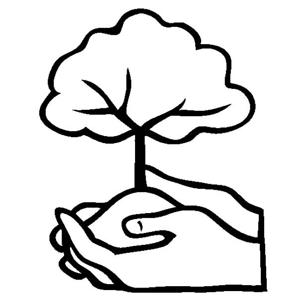 Arbor Day, : Arbor Day Plant a Tree Coloring Pages