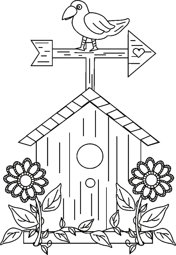 Bird Houses Free Coloring Pages