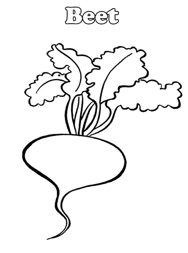 Beets, : B is for Beets Coloring Pages