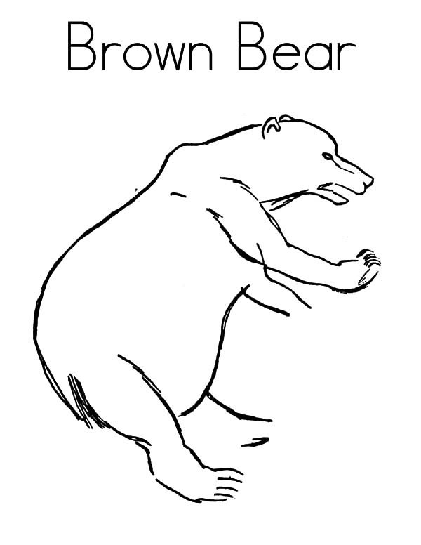 Brown Bear, : B is for Brown Bear Coloring Pages