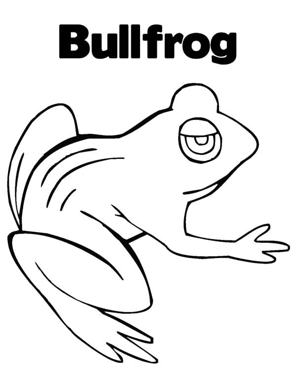 Bullfrog, : B is for Bullfrog Coloring Pages