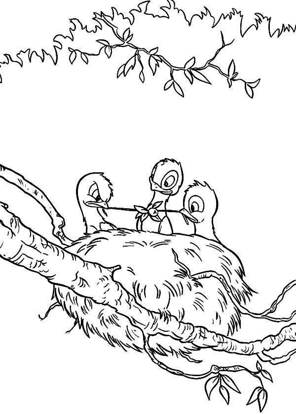 Bird Nest, : Baby Bird Eating in Their Bird Nest Coloring Pages