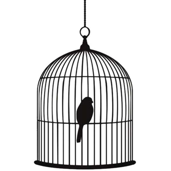 Bird Cage, : Baby Bird Sleeping in Bird Cage Coloring Pages