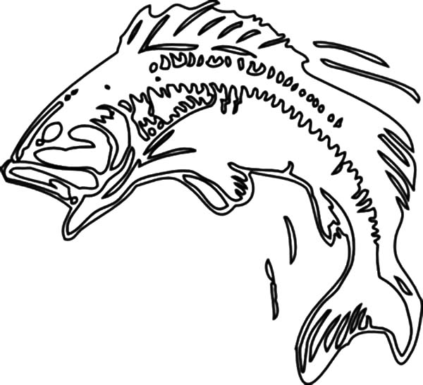 Bass Fish Jumping Coloring Pages
