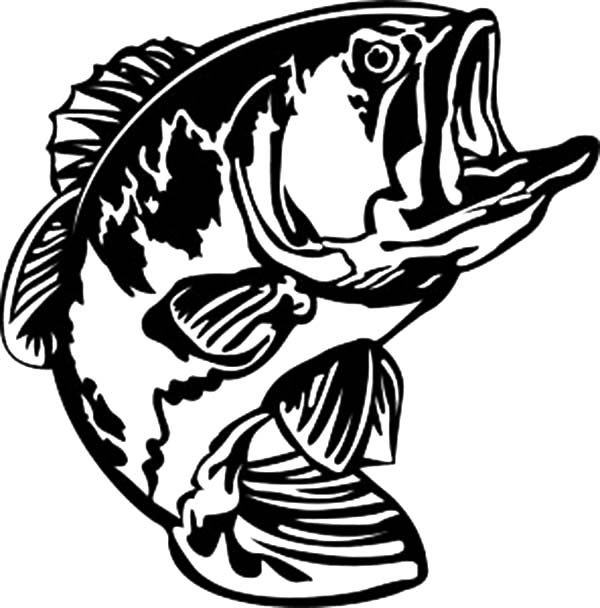 Bass Fish, : Bass Fish Open His Mouth Wide Coloring Pages