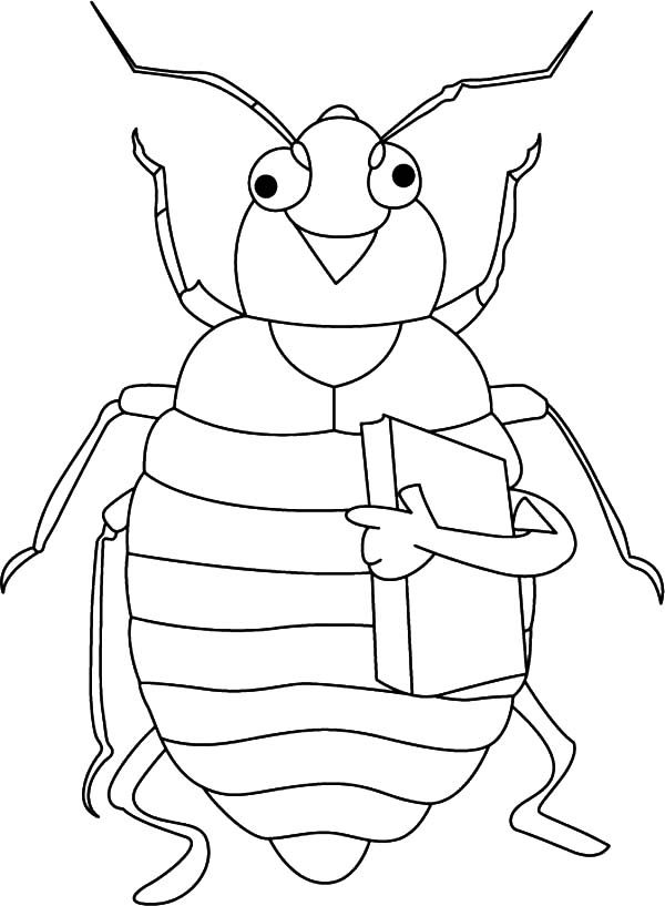 Beetle, : Beetle Holding Book Coloring Pages
