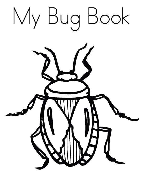 Beetle, : Beetle My Bug Book Coloring Pages